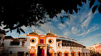 Seville Sightseeing, River Cruise, Bullring and Basilica Macarena Guided Tour