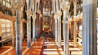 Barcelona Comprehensive Day Tour with Access to Sagrada Familia