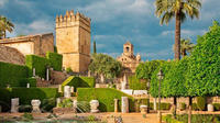 Seville, Cordoba and Granada Guided Custom Tour