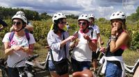Full-day Bike Tour Through the Penedès Wineries