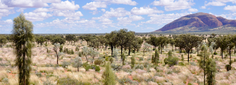 Alice Springs Hiking & Camping