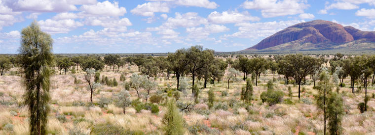 Top Alice Springs Air, Helicopter & Balloon Tours
