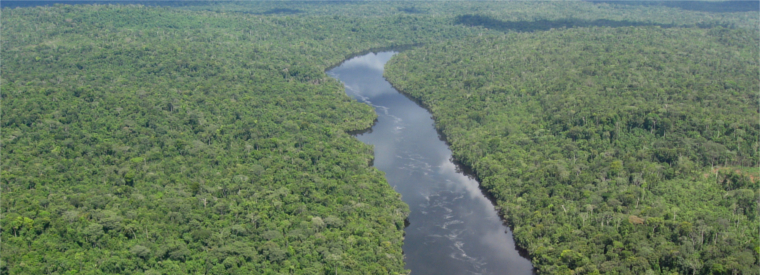 Top Amazon Private Sightseeing Tours