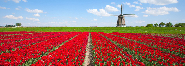 Amsterdam Day Trips & Excursions
