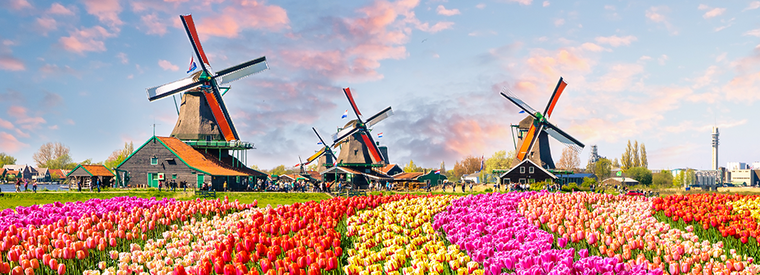 Top Amsterdam Day Trips & Excursions