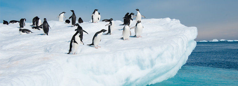 Antarctica Cruises, Sailing & Water Tours