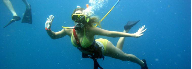 Top Aruba Snorkeling