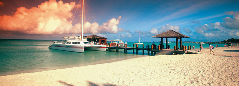 Top Aruba Bus & Minivan Tours