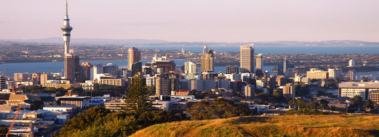 Auckland Half-day Tours