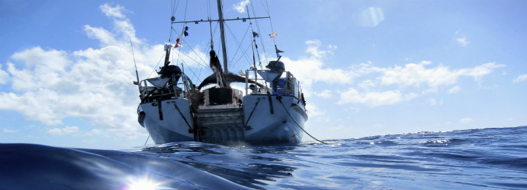 Top Bahamas Sailing Trips