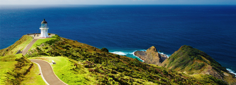 Bay of Islands Day Trips & Excursions