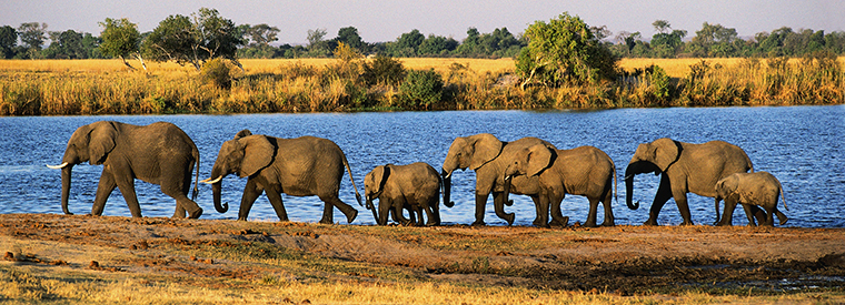 Top Botswana Outdoor Activities