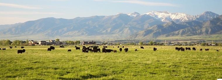 Top Bozeman Multi-day & Extended Tours