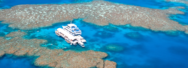 Top Cairns & the Tropical North Lunch Cruises