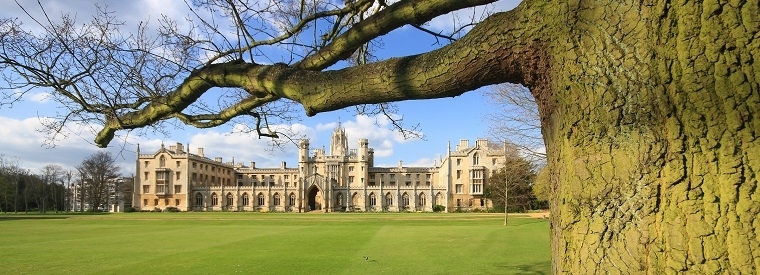 Top Cambridge Cultural & Theme Tours
