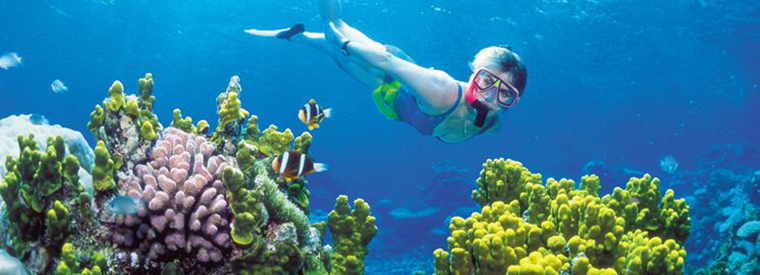 the top 10 cancun snorkeling tours w prices