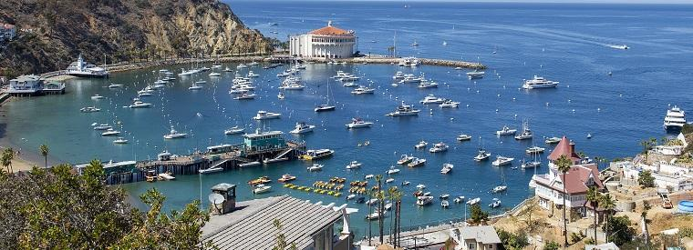 Catalina Island Cruises, Sailing & Water Tours