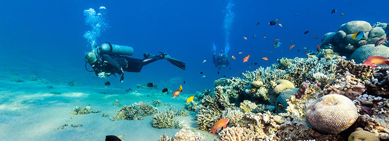 Top Dahab Multi-day Tours