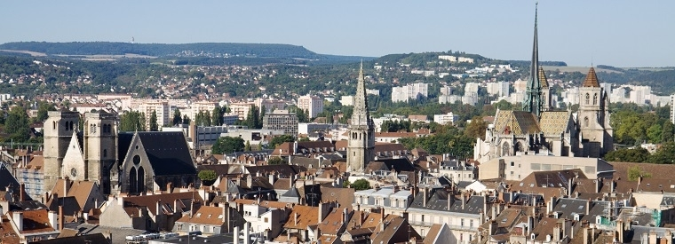 Top Dijon Half-day Tours