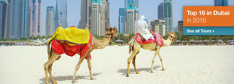 Dubai, United Arab Emirates Trips and Excursions