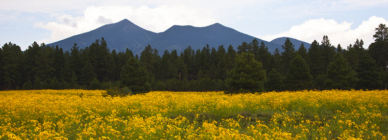 Top Flagstaff Full-day Tours