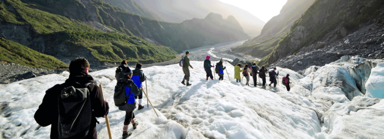 Fox Glacier Tours, Tickets, Excursions & Things To Do