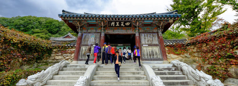 Top Gangwon Private Sightseeing Tours