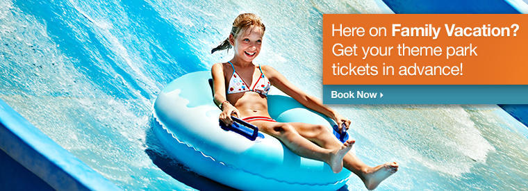 Gold Coast Half-day Tours