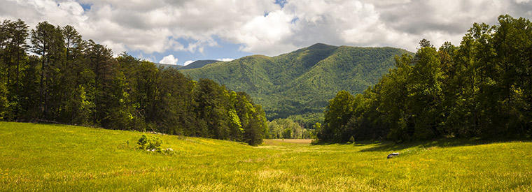 Top Great Smoky Mountains National Park Hiking & Camping