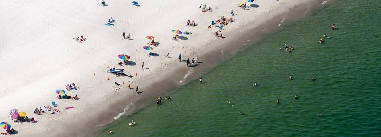 Top Gulf Shores Tours & Sightseeing