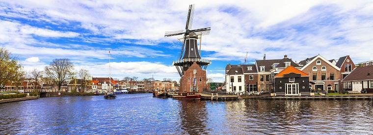 Haarlem Tours, Tickets, Activities & Things To Do