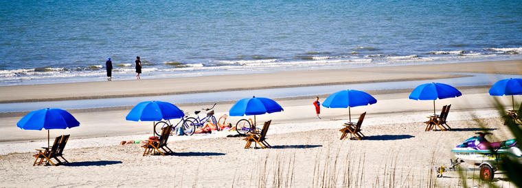 Top Hilton Head Island Kid Friendly