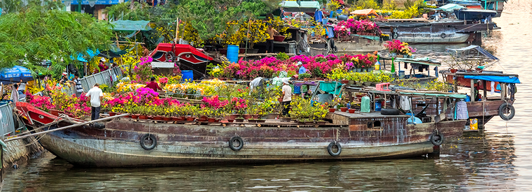 Top Ho Chi Minh City Private Day Trips