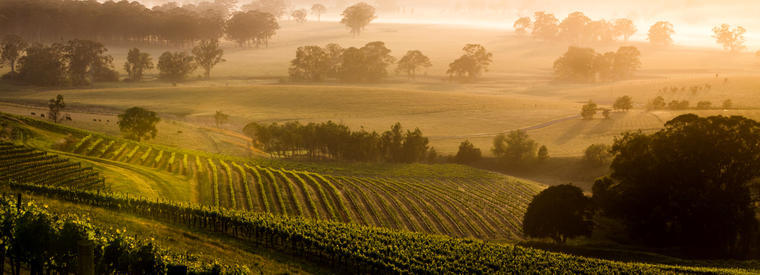 Top Hunter Valley Air, Helicopter & Balloon Tours