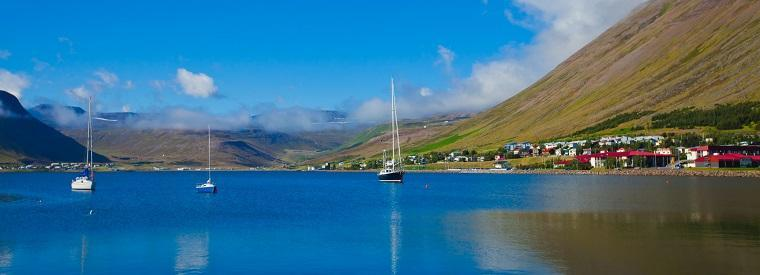 Top Isafjordur Nature & Wildlife