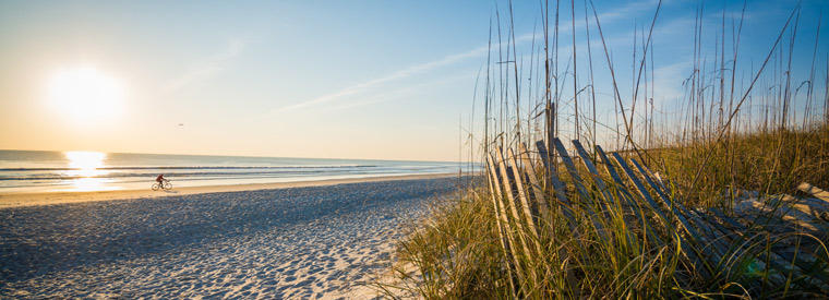 Top Jacksonville Tours & Sightseeing