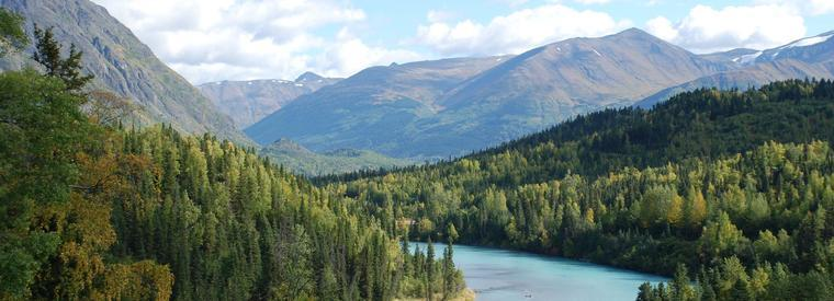 Kenai Tours, Tickets, Activities & Things To Do