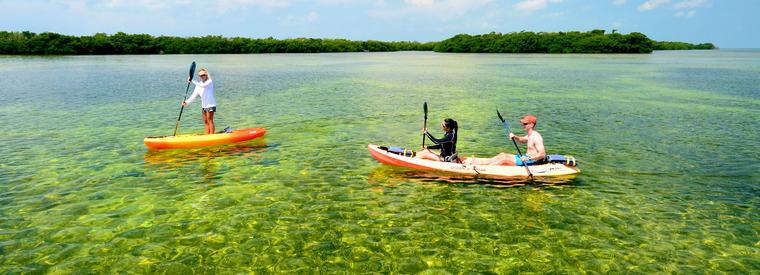 Top Key West Kayaking & Canoeing