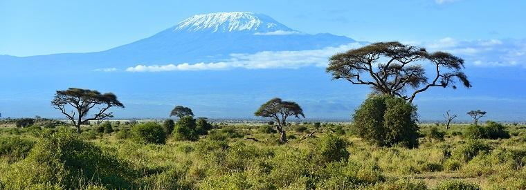 Top Kilimanjaro Private Sightseeing Tours