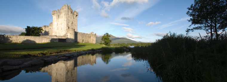 Top Killarney Bus & Minivan Tours
