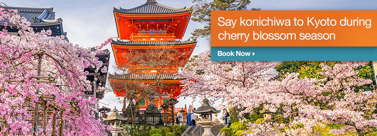 Top Kyoto Holiday & Seasonal Tours