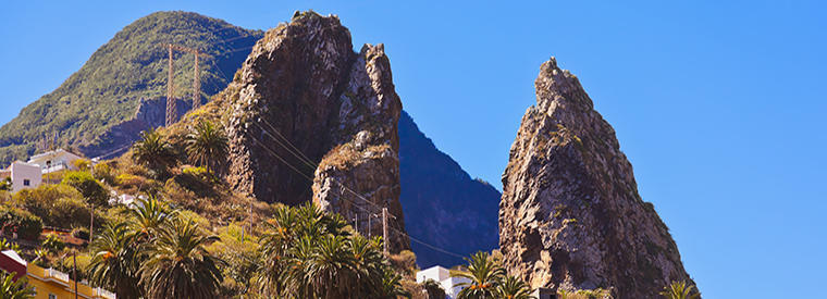 Top La Gomera Nature & Wildlife