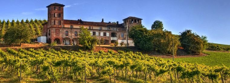 Langhe-Roero and Monferrato Half-day Tours