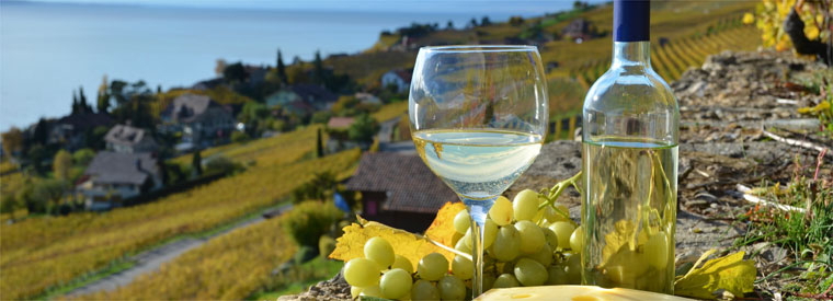 Top Las Vegas Wine Tasting & Winery Tours