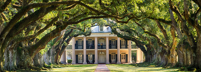 Top Louisiana Half-day Tours