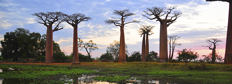 Top Madagascar Cultural Tours