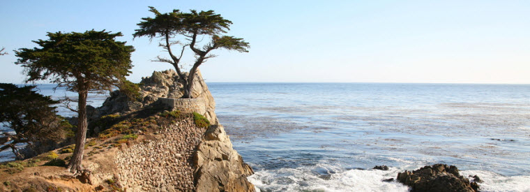 Top Monterey & Carmel Walking & Biking Tours