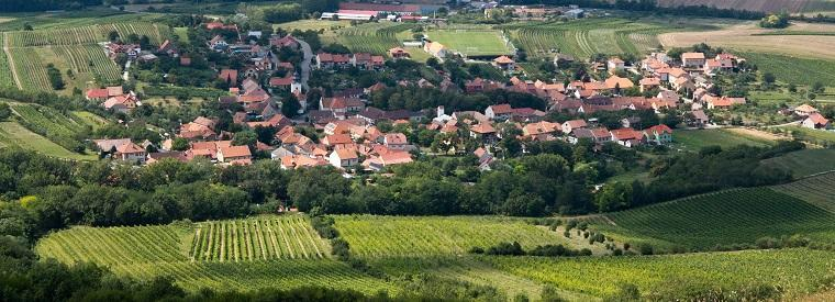 Moravia Walking & Biking Tours