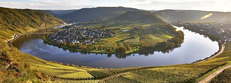 Moselle Valley Wine Tasting & Winery Tours
