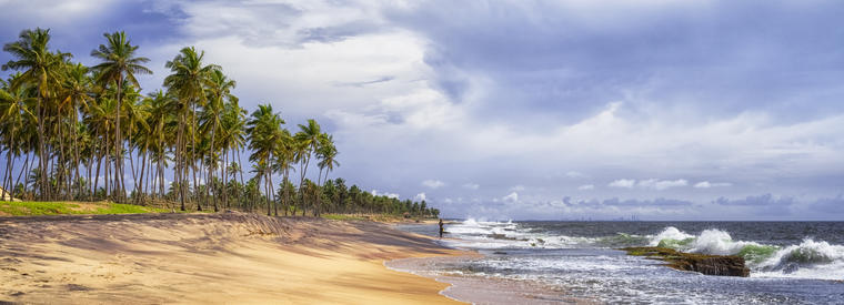 Top Negombo Transfers & Ground Transport